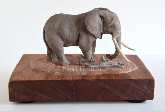 Tim' (bull elephant) By Neal Griffin - ceramic - 19cm x 13cm x 12cm - £195