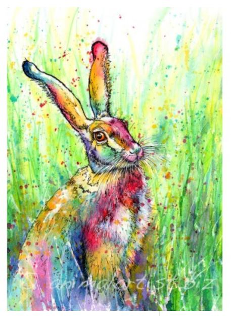 Horace Greeting Card By Sally Goodden - (£2.50 each or 5 of any card design for £10) plus £2.50p+p