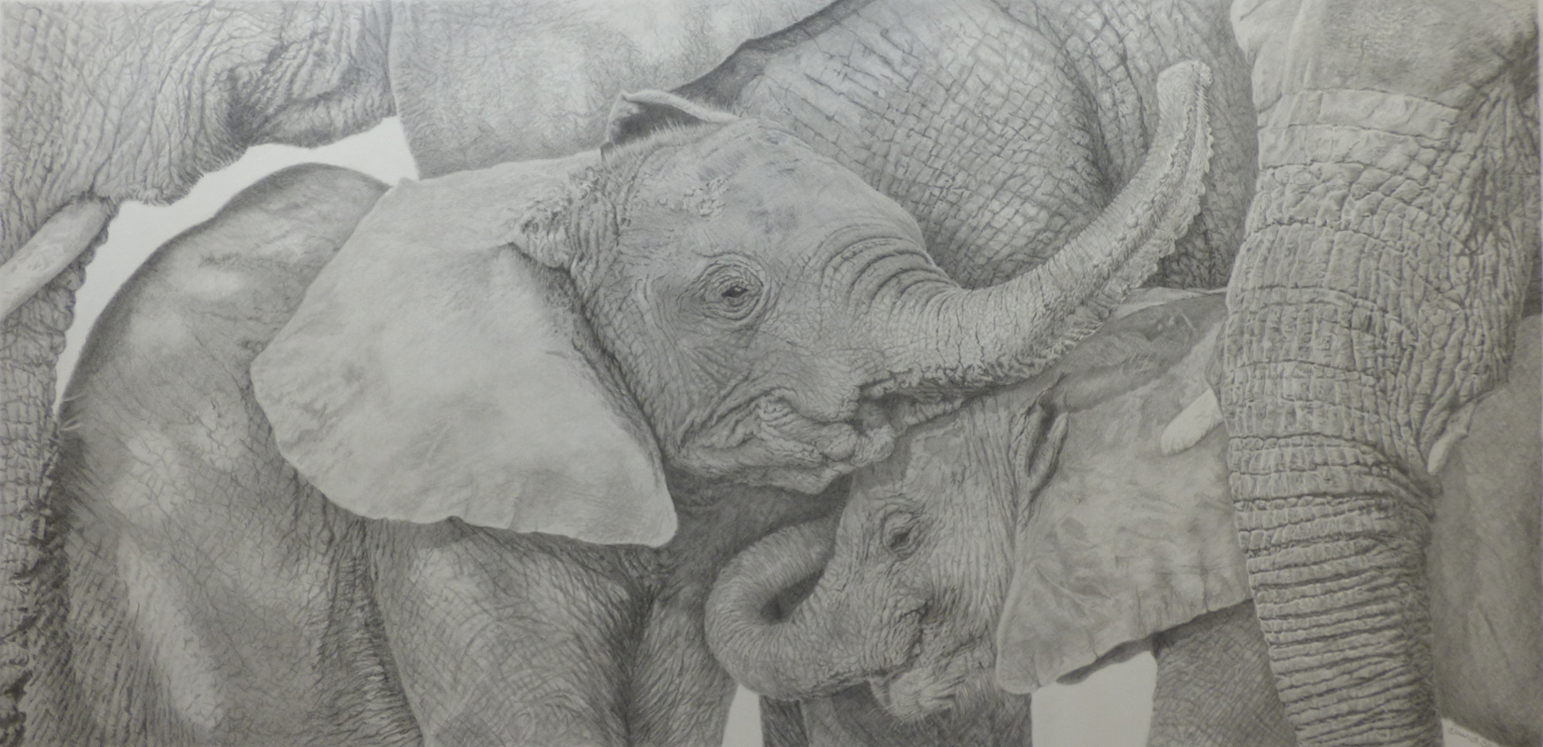 Love you too By David Skidmore – 86 x 44cm – graphite pencil on Fabriano Artistico hot press paper - £4500