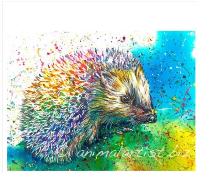 Scruffles Hedgehog Print By Sally Goodden - (from £18 to £30, depending on size) plus £3.50p+p