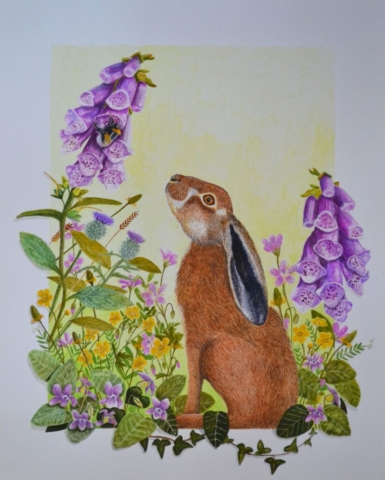 "'The Hare & the Bumblebee' By Julie Weir - watercolour - £195 -16"" x 20"""