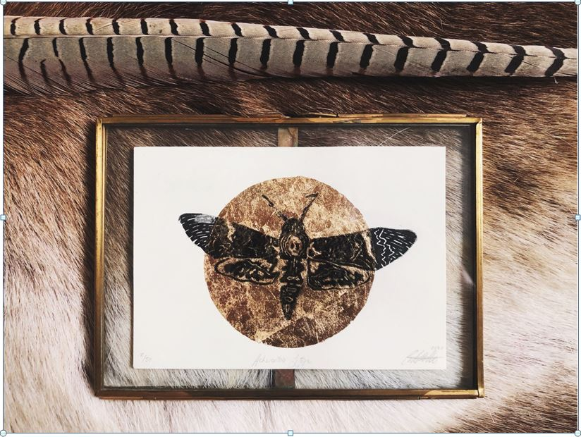Acherontia Styx By Georgia de Buriatte - Framed Lino print and gold leaf - A6 in A5 frame - £40