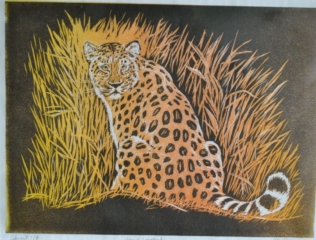 Amur Leopard by Helen Rawlings - Relief print on Japanese paper - Limited edition of 8j - Framed 15.5x13.5'' - £145