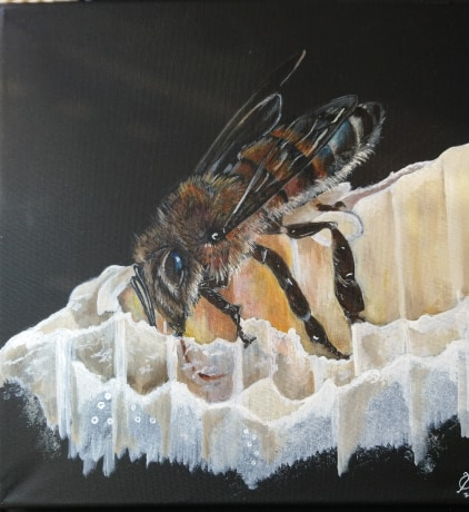 Bee Cleaner By Yvonne Castle Acrylic 30x30cm £200