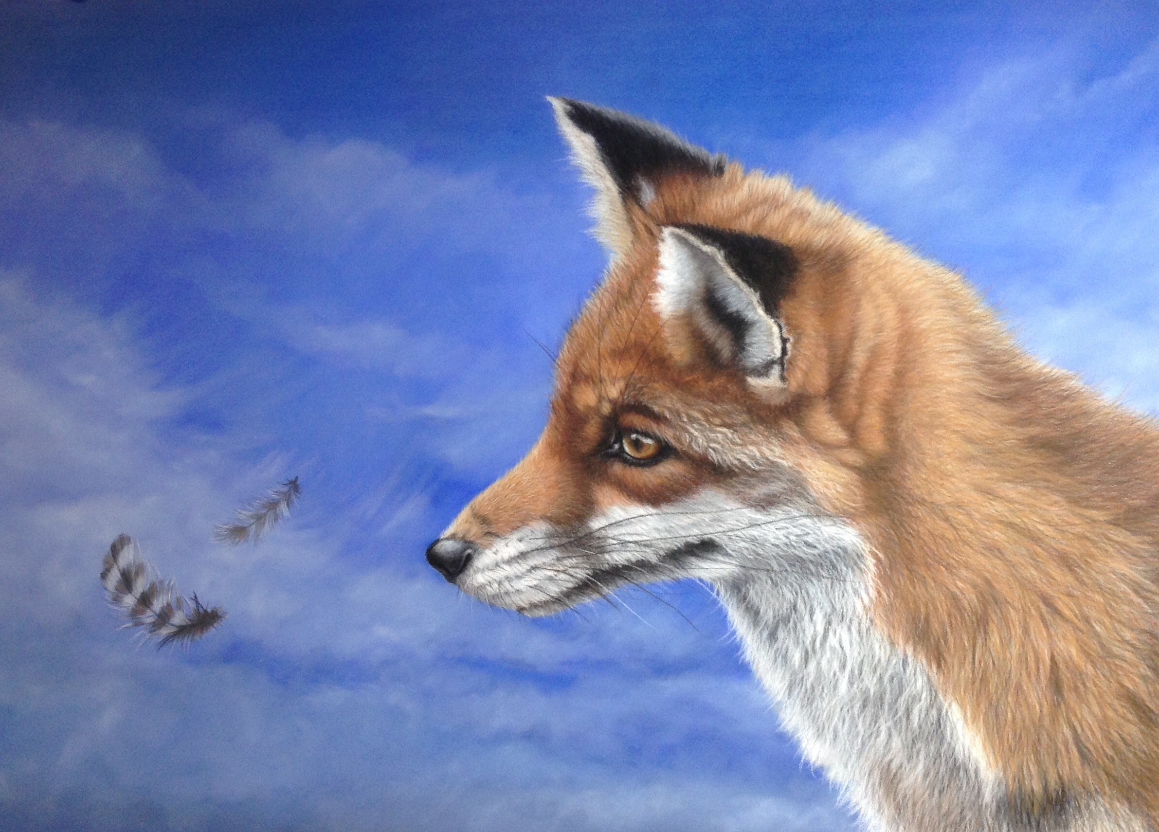 """Fascination"" By Kerry M Vaughan (fox and feathers) Original pastel.Framed 57 x 44 cms. £350 plus p&p"