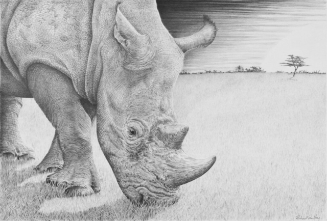 New Day Dawning By Richard Paulley - Graphite - Framed Original - 64x51cm £350