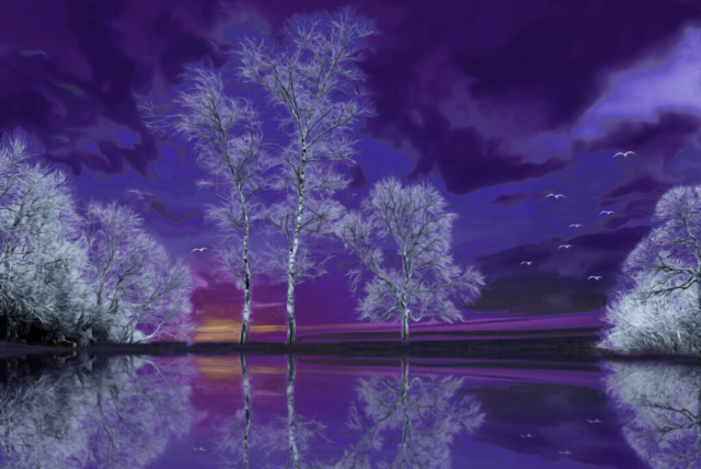 Purple Reflection By Martin Raskovsky - Digitally Manipulated Photography - (Various Sizes & Prices)