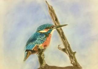 Waiting for Supper By Carolynne Winchester - Coloured Pencil - Framed 33.5x38.5cm - £125
