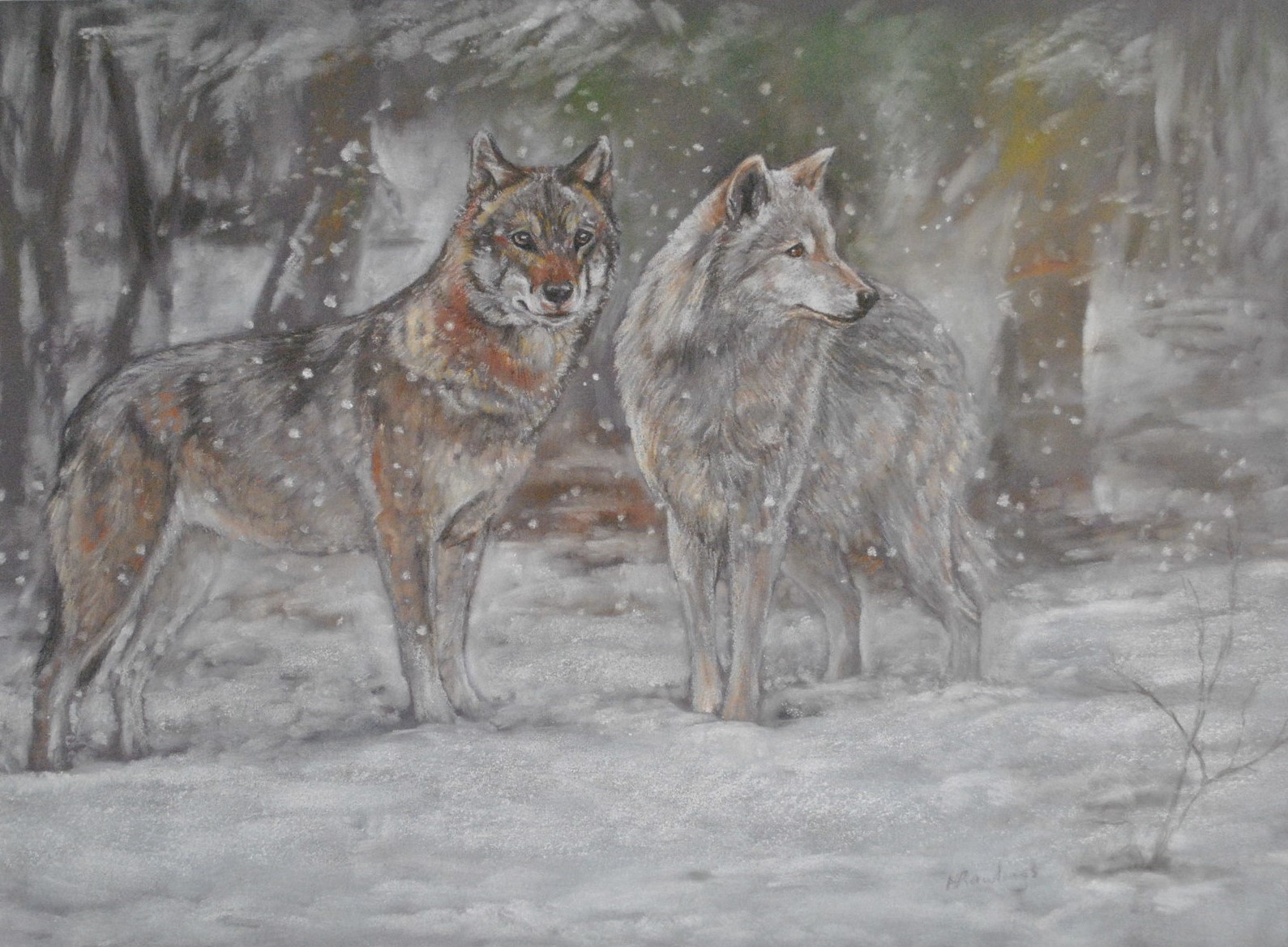 Winter Wolves by Helen Rawlings - Pastel on Pastel Board - Framed Original - 32x18'' - £325