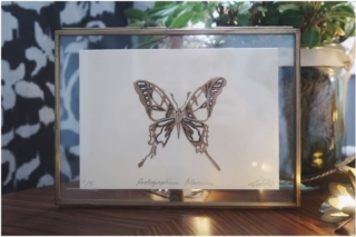 Zebra Swallowtail By Georgia de Buriatte - Framed - Lino print, hand illustrated ink - A6in A5 frame - £30