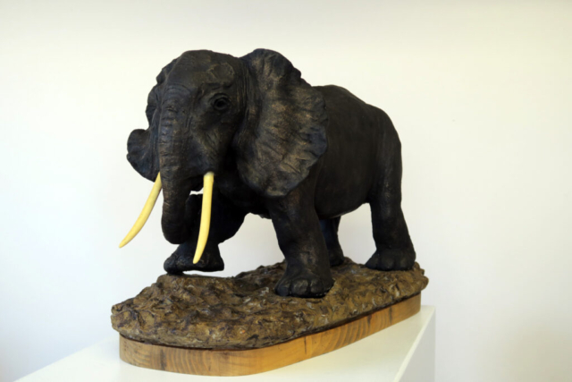 Elephant by Anne Swatton - Ceramic - 12L x 10H in - £150
