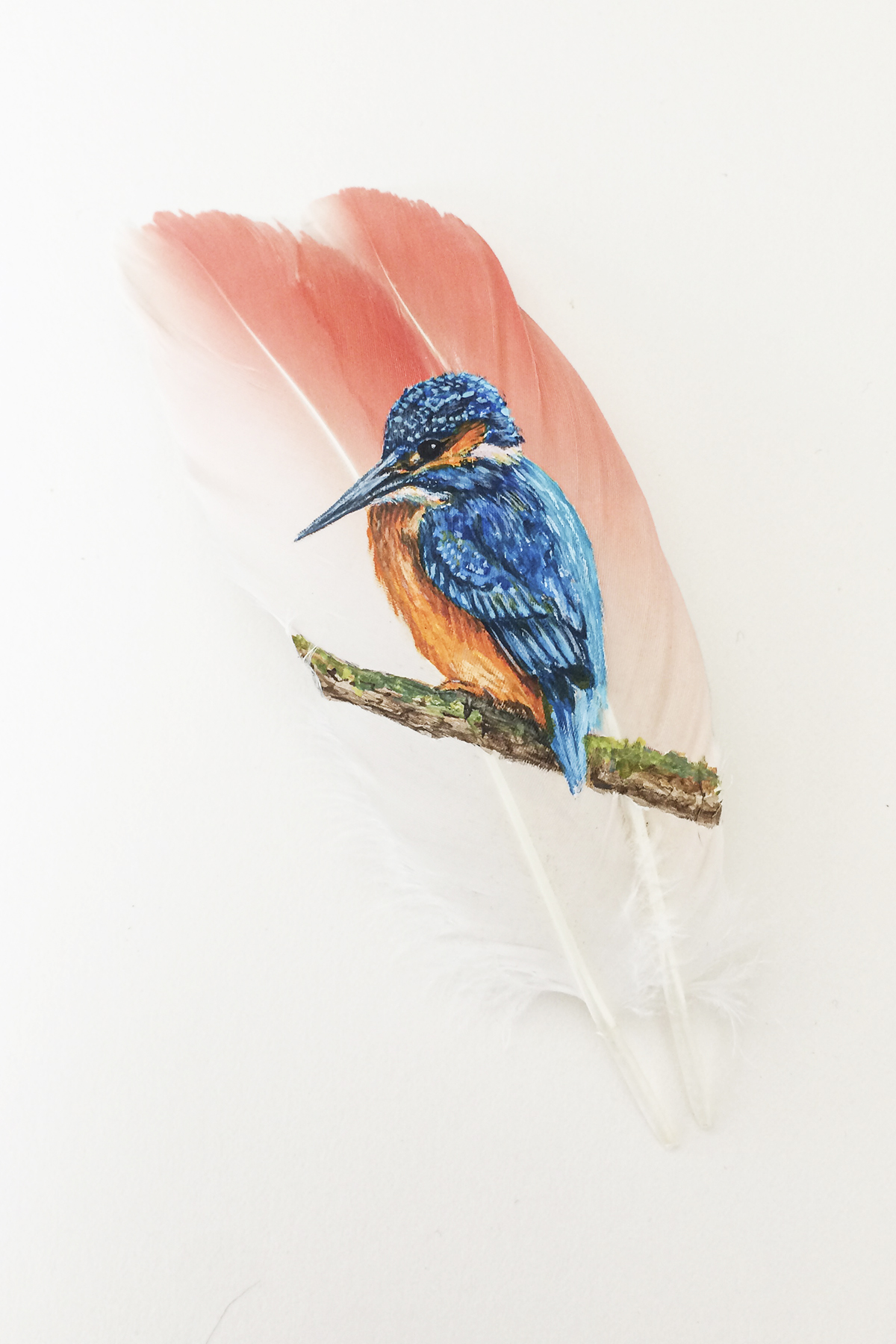 "Fishing At Sunset By Mandi Baykaa-Murray - (Kingfisher on Flamingo Feathers) - 6"" x 8"" - £325"