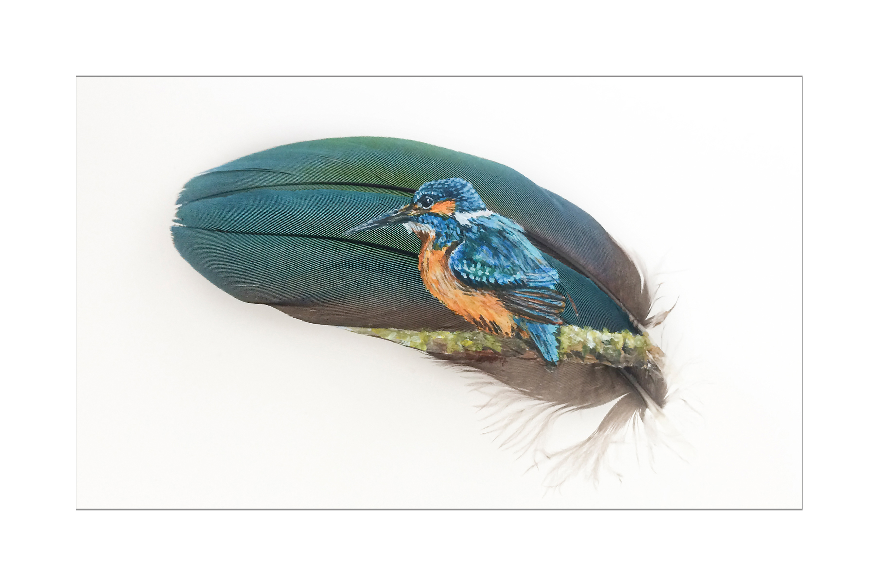 "The Brightest Blue By Mandi Baykaa-Murray - (Kingfisher on Macaw Feather) - 6"" x 8"" - £325"