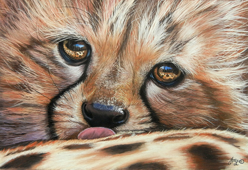 Reflective (Cheetah Cub) by Julie Longdon - Pastel - 10in x 10in Framed - £425.00