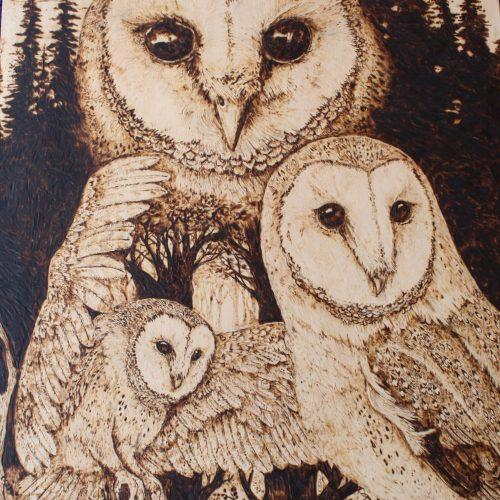 The Owls By Peter Slade - Pyrography - 11x14