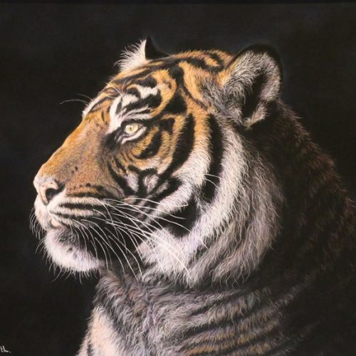 Night Watcher by Angela May Smith - Pastel - 19.5x19.5in - £425