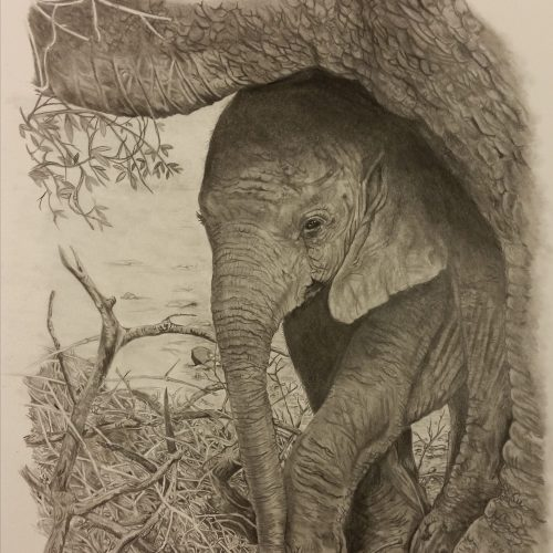 """Shelter From The Rain By Peter Slade - Graphite - 17x15"""" - £700"""