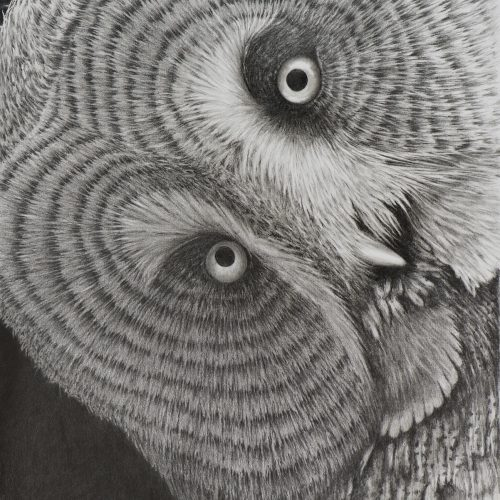 The Great Grey By Richard Paulley - Graphite - Framed Original - £350