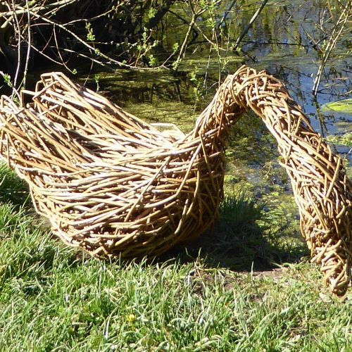 Willow Swan by Jacqueline Rolls - Willow - 45 x 75 cm - £200